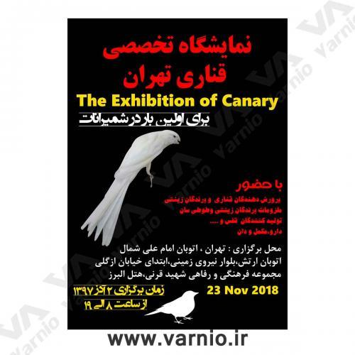 نمایشگاه قناری تهران  پوستر                                        1